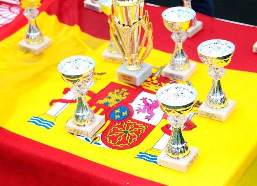 Футбольный турнир на кубок посольства Королевства Испания